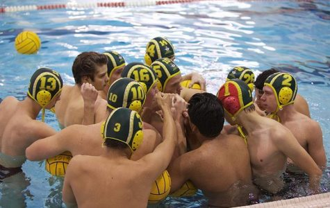 Leaders in Water Polo