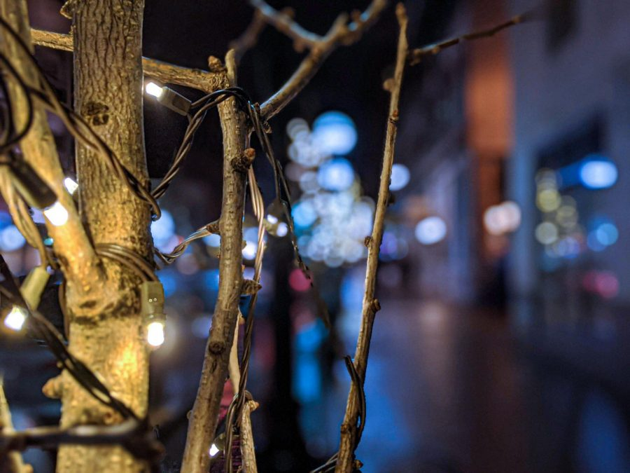A close-up view from  of the lights on a tree in downtown Ann Arbor.