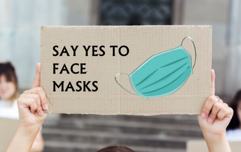 Put science first: why face masks matter