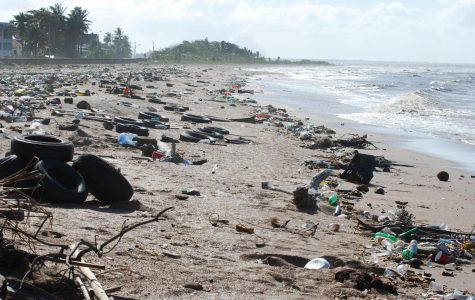 Pictured is Guyana, a country in South America which is dealing with the ocean littering issue along with the rest of the world.
