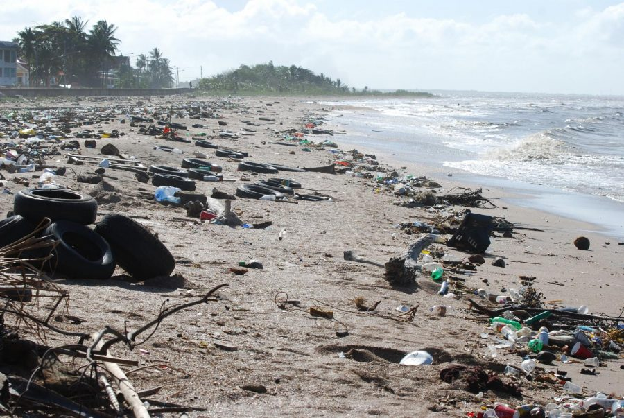 Pictured+is+Guyana%2C+a+country+in+South+America+which+is+dealing+with+the+ocean+littering+issue+along+with+the+rest+of+the+world.