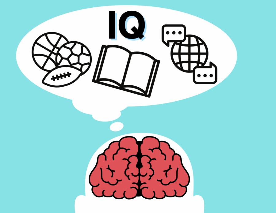 The majority of gifted schools in America require an IQ test for admission. However, recent studies have proven that the test is inaccurate and it has caused racist division within elementary schools.